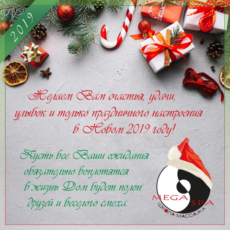 Желаем Вам счастья, удачи, улыбок и только праздничного настроения в Новом 2019 году!